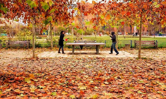 Horaires pendant les vacances d'automne